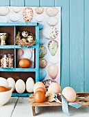 Assorted eggs in a wooden egg holder and in a kitchen rack