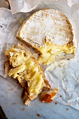 Reifer Coulommiers (French soft cheese) sliced and on bread