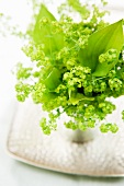 Lady's mantle flowers in an aluminum cup