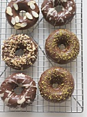Dark Chocolate Covered Donuts with Assorted Toppings on a Cooling Rack; From Above