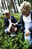 Two boys picking blueberries in a forest