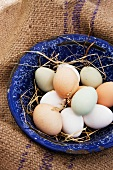 Fresh eggs from a farm (white, green, brown) in an enamel bowl on a jute sack