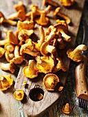 Chanterelle mushrooms on a wooden board