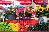 Flowers and vegetables on a market stall