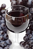 A glass of red wine and red grapes