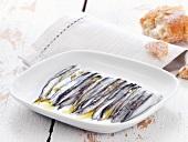 Sardellen in Olivenöl