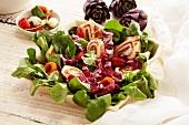 Salat mit Käse-Salami-Roulade und Spinat