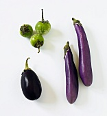 Three Assorted Eggplants; Thai Eggplant, Chinese Eggplant, Italian Eggplant