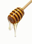 Honig tropft vom Honiglöffel