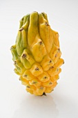 A yellow pitahaya