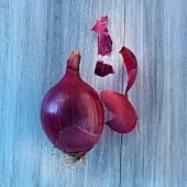 Rote Zwiebel und Zwiebelschale