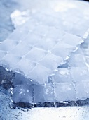 Ice cubes in an ice cube bag