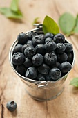Blueberries in a zinc bucket