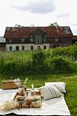 Edles Picknick mit Champagner auf der gemähter Wiese vor altem Bauernhaus