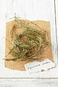 Ackerschachtelhalm (Equisetum arvense), getrocknet