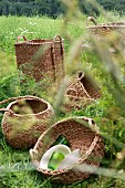 Various storage baskets in meadow