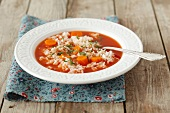 Tomato soup with rice and carrots