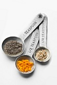 Metal Measuring Spoon Set with Assorted Spices