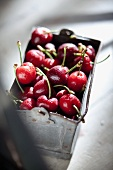 Fresh cherries in a metal bucket