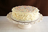 Vanilla Frosted Cake with Colored Sprinkles