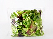 Mixed green salad in a plastic bag