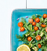 Arugula Salad with Avocado, Cherry Tomatoes, Red Onion and Lemon