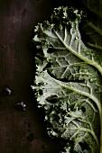 Grünkohlblatt mit Wassertropfen