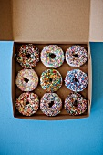 Frosted Doughnuts with Assorted Sprinkles in a Box; From Above