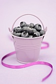 Blueberries in a purple bucket