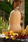 Butternut squash with a heart on a wooden box