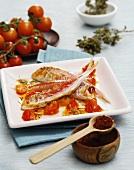 Triglie allo zafferano (Rotbarben mit Safran & Tomaten)