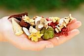 Flower pot-pourri