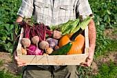 Man holding wooden create of freshly farmed vegetables