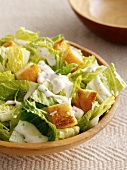 Mixed leaf salad with croutons and yoghurt dressing