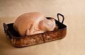 Whole Raw Turkey in a Roasting Pan