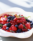 Berry salad with lemon balm