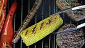 A corn cob, a sausage and a hamburger on a barbecue