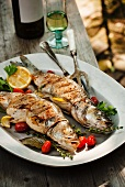 Two Whole Grilled Stuffed Branzino Fish on a Platter; On an Outdoor Table