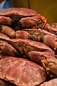 Cooked crabs on a market stand