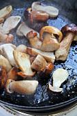Fried porcini mushrooms in a pan