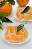 Clementine wedges with leaves