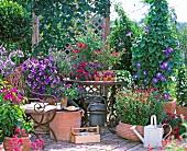 Gartenterrasse im mediterranen Stil mit verschiedenen Terrakottavasen und prächtig blühenden Pflanzen