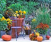Herbstlich dekorierte Gartenterrasse mit gelb-orangen Farbakzenten