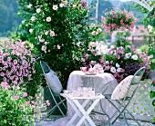 Sonniger Sitzplatz zwischen duftenden Rosen und rosa blühenden Blumenampeln