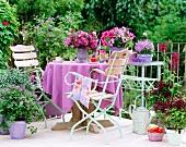 Violett blühende Balkonecke mit passender Tischdecke auf dem Balkontisch