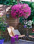 Strahlend violette Blumenampel auf Balkon mit Holzgeländer