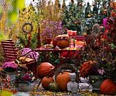 Herbstilleben mit Kürbissen und Herbstblumen