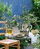Schwarze und grüne Oliven, Olivenöl mit Rosmarin und Olivenzweige auf einem Tisch im Freien