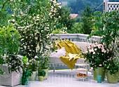Balkon mit schöner Aussicht und weiss blühenden Pflanzen