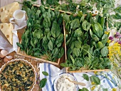 Spinach quiche with ingredients